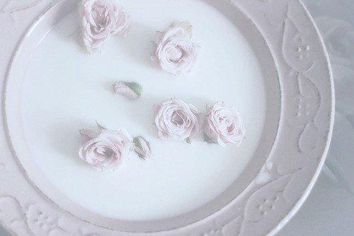 Холодное молоко в тарелке