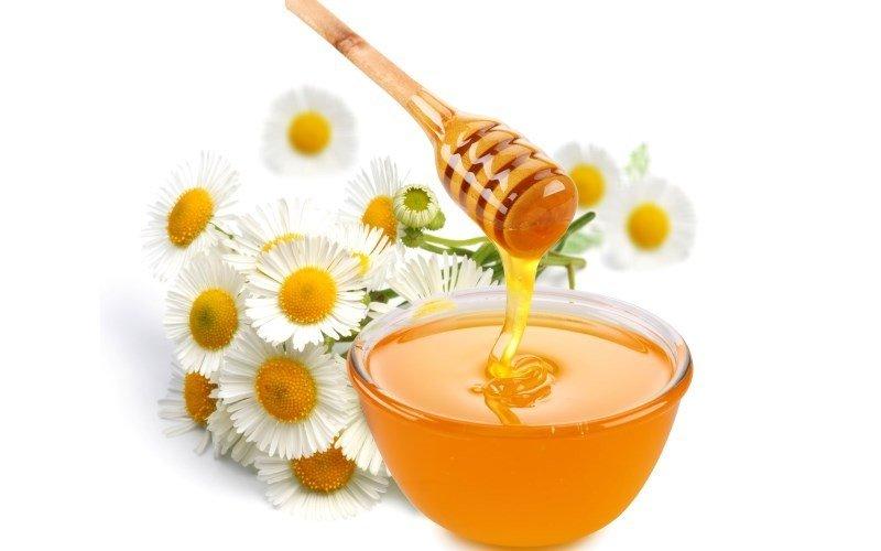 Мед и ромашка