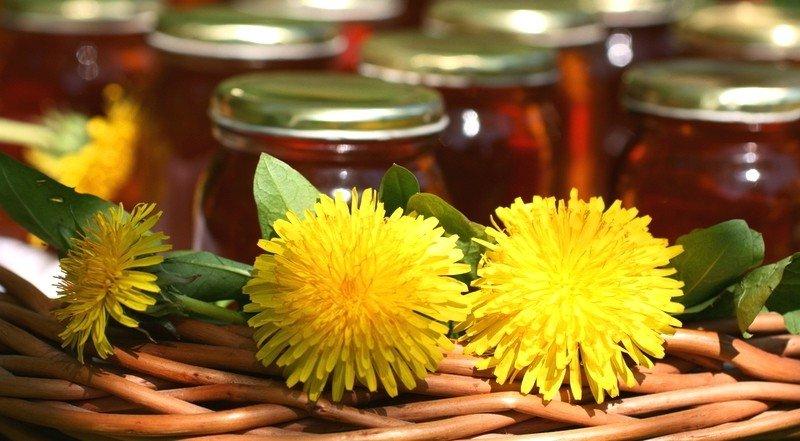 Одуванчик и мед