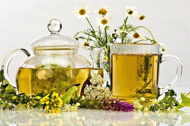 Отвар из разных трав в чайнике, чашке и растения
