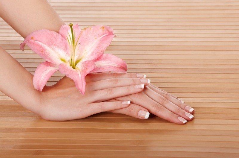 Красивые ухоженные руки и цветок
