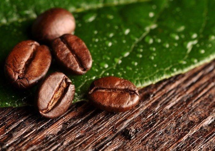 Зерна кофе на листьях