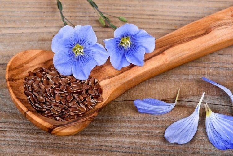 Семена и цветы льна