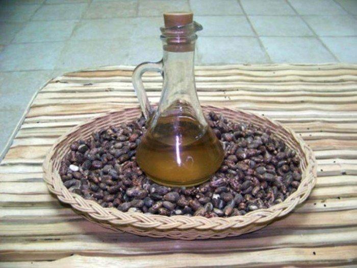 Касторовое масло и плоды клещевины обыкновенной