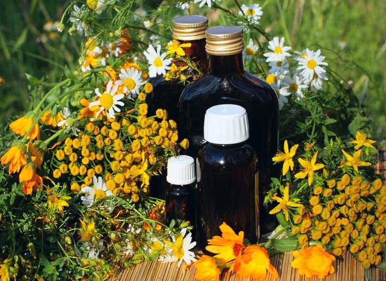 Лекарственные травы и настои