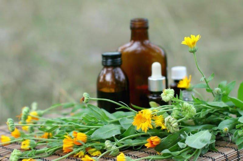 Настойка календулы и цветы