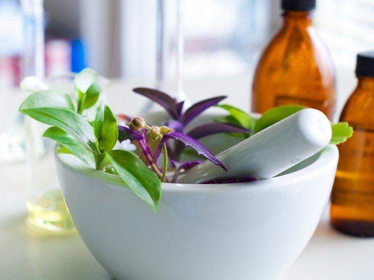 Народные средства от купероза, лекарственные растения в миске