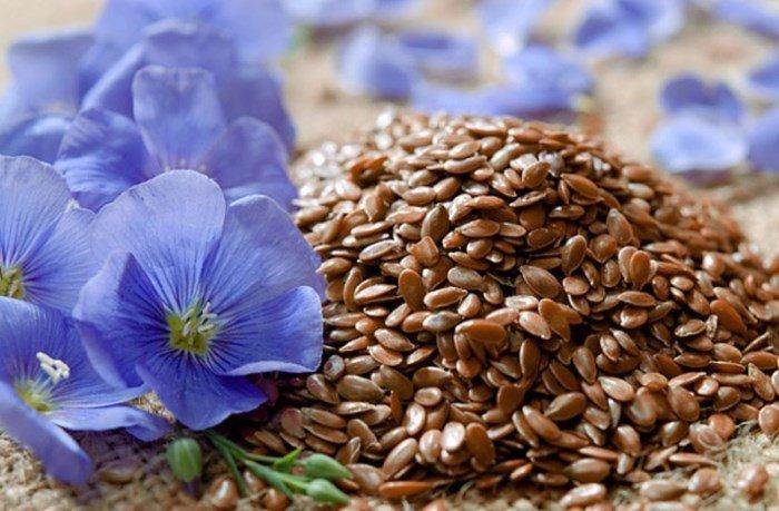 Льняное семя и цветки