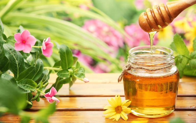 Мед и цветы