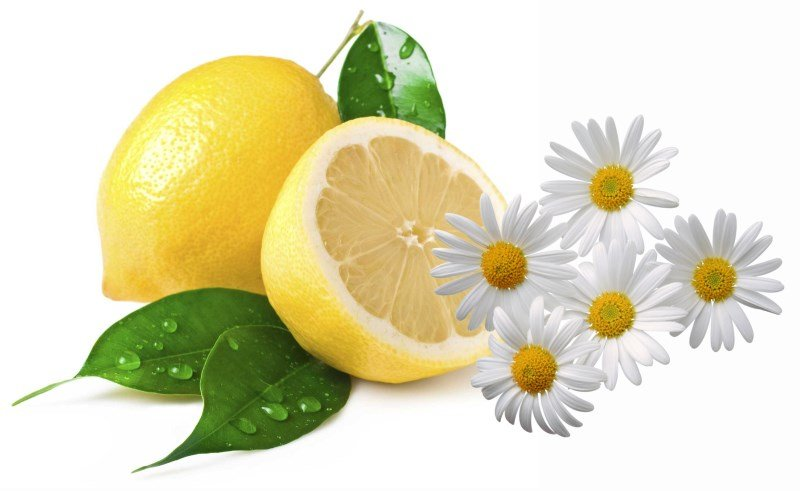 Лимон и ромашка