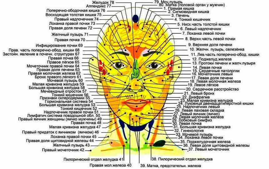 Схема биологически активных точек на лице и голове