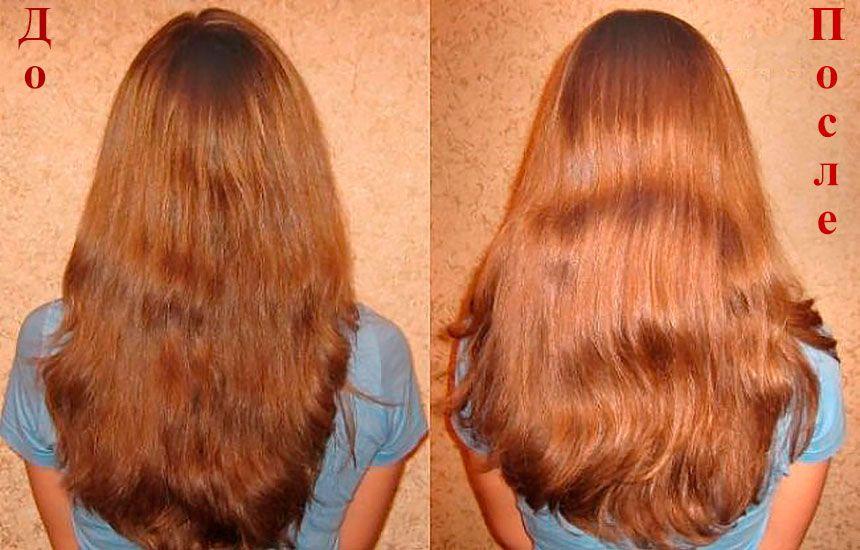 Волосы осветленные лимонным соком