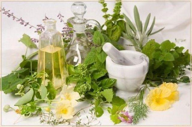 Травы оказывают положительный эффект на кожу головы, фолликулы, усиливают кровоток и стимулируют рост волос, также травы богаты витаминами и полезными веществами