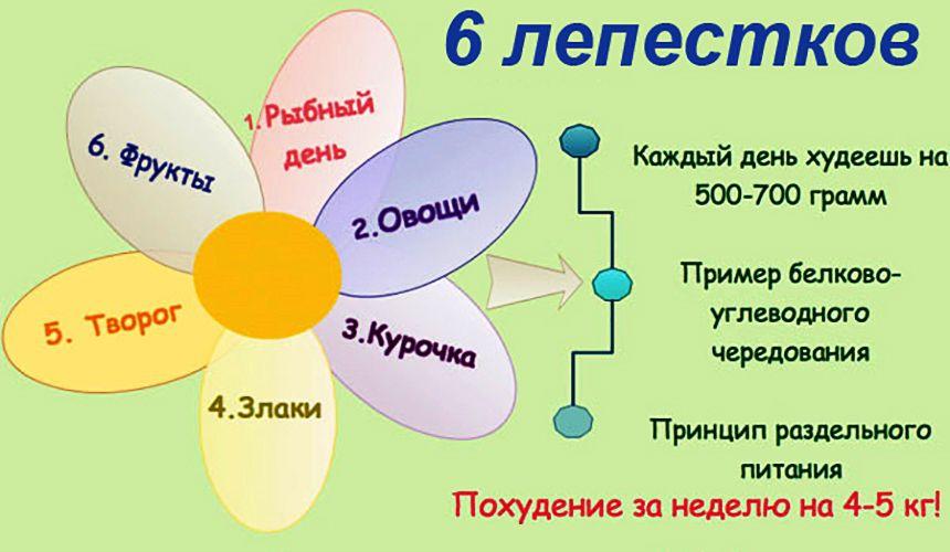 6 лепестков
