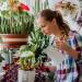 Выносливые домашние растения: список, фото, названия и особенности